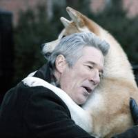 Hachi: A Dog's Tale, 2009