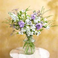Best letterbox flowers for choice: Bloom & Wild letterbox flowers