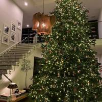 Kylie Jenner's Christmas tree the size of her house.