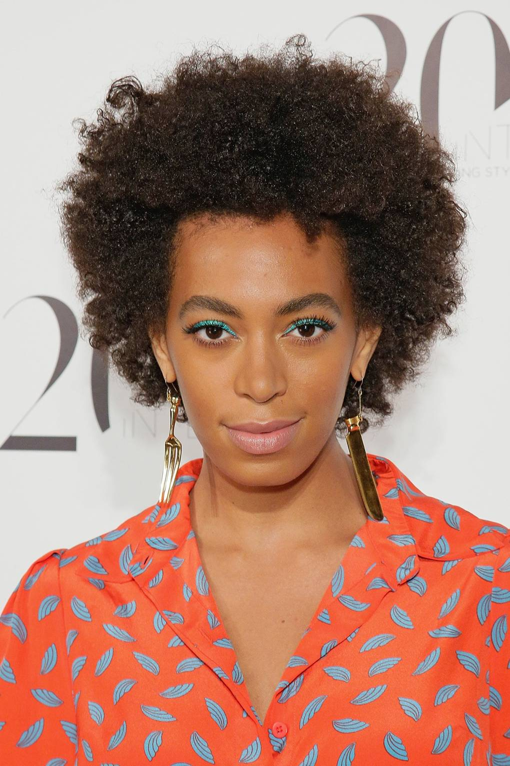 Afro Hair Icons Celebrity Afro Hair And Hairstyles Glamour Uk