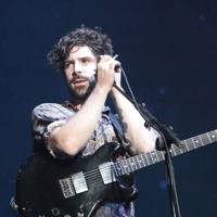 Foals at Latitude