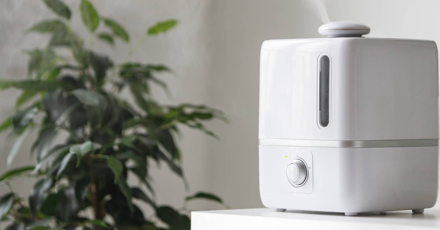 Is the humble air humidifier the key to hydrated skin? We ask the experts...