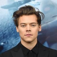 6. Harry Styles