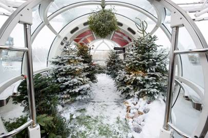 SNOW GLOBE EXPERIENCE LONDON EYE