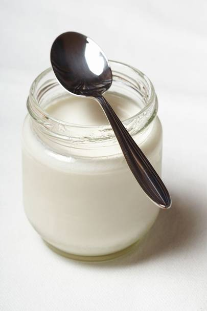 Pro-Biotic Yoghurt