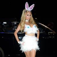 Paris Hilton as a Bunny Rabbit