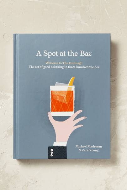 A Spot at the Bar Book