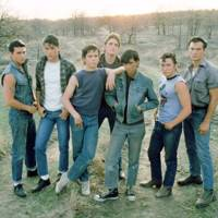 Everyone in The Outsiders (bar Tom Cruise)