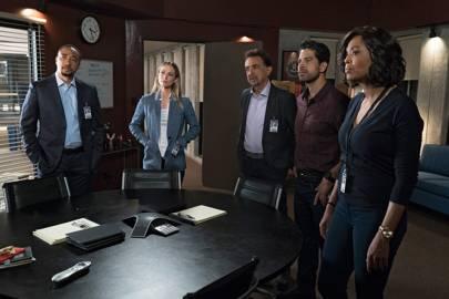 Criminal Minds, Hawaii Five-0, NCIS, Law & Order etc.