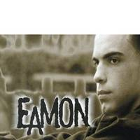 Eamon – F*** It (I Don't Want You Back) (#1 in 2004)