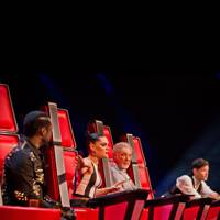 TV: The Voice UK – Season 2