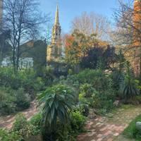 Phoenix Gardens, Covent Garden