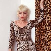 Be fearless and dare to wear leopard print