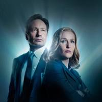 The X Files