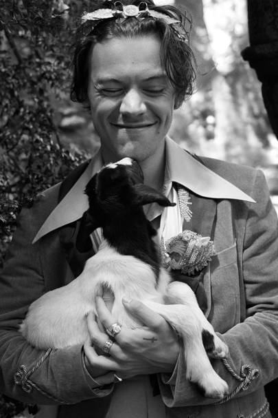 Image result for harry styles black and white
