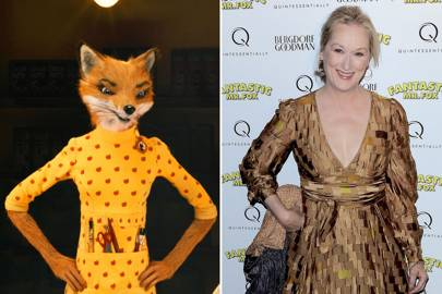 Meryl Streep as Mrs Fox in Fantastic Mr Fox