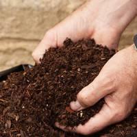 The (boring but neccessary) compost