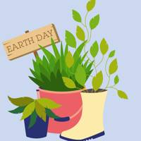 This is exactly what Earth Day 2019 is all about and here's how you can celebrate it
