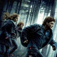 Film: Harry Potter and the Deathly Hallows: Part 1