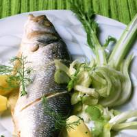 Sea Bass With Fennel Salad