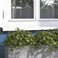 The window box planter