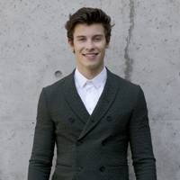 84. Shawn Mendes