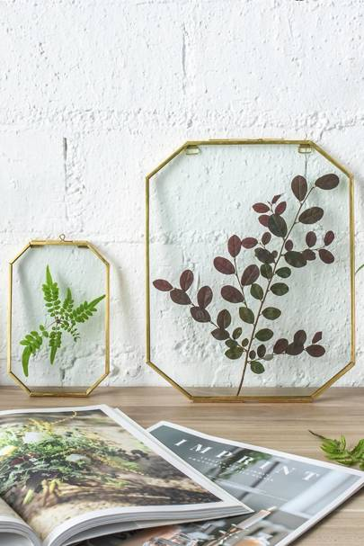 Best wall art: for nature lovers