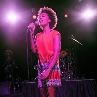 Solange at the Budweiser Made In America Festival