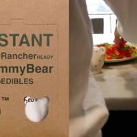 Wiz of Oz-READY Gummy Bear Microedibles Kit by Shop Earthier