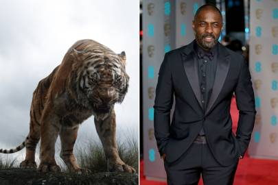 Idris Elba and Shere Khan