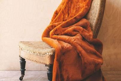 Best cozy blanket
