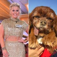 Amelia Lily 77.6k v Toast Meets World 379k Instagram followers