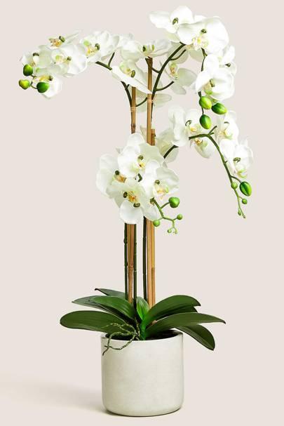 Best artificial flowers: Marks & Spencer