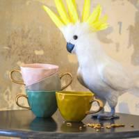 Best pastel coffee mug