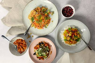 Best vegan meal delivery for variety