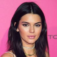 Kendall's pinky-purple look
