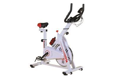 Best cheap spinning bike