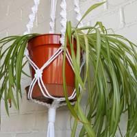 Hanging plant pot making kit