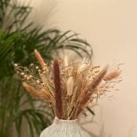 Dried flowers: loray stems