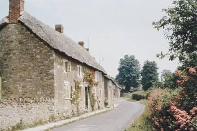 4. Dorset