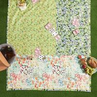 Anthropologie picnic blanket