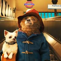 """I'll never be like other people, but that's alright, because I'm a bear. A bear called Paddington."""