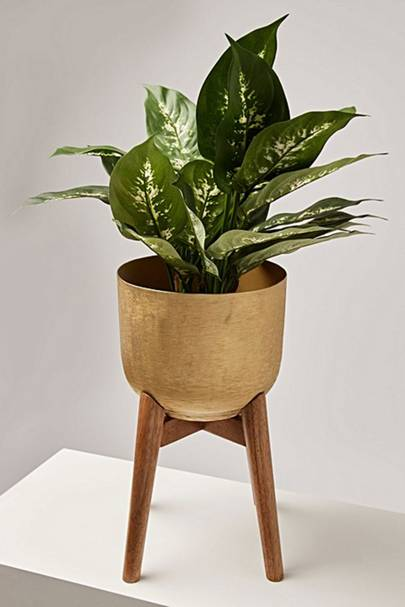Best housewarming gift for plant lovers