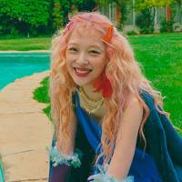 Sulli's Fanciful Liner