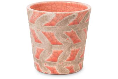 Coral plant pot