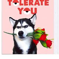 Best silly Valentines Day card