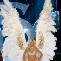 XXL wings