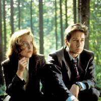 Gillian Anderson & David Duchovy