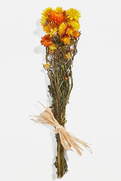 Cheap dried flowers: assorted colours