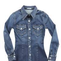 The item: Denim jacket or denim shirt dress